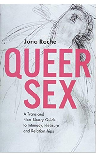 Queer Sex : A TRANS and Non-Binary Guide to Intimacy, Pleasure and Relationships